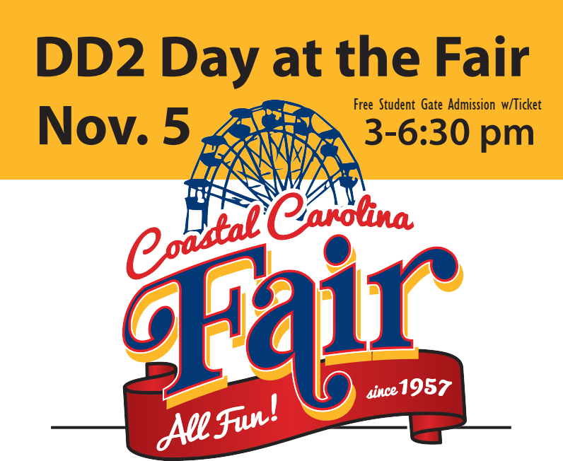 DD2 Day at the Fair Poster
